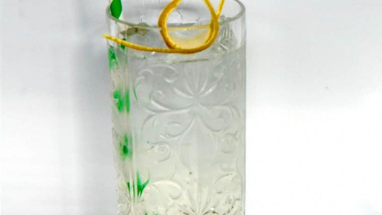 FBS Bar Catering Edelflower & Orange Gin Tonic